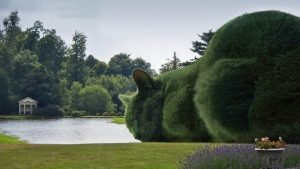 Topiary Cats