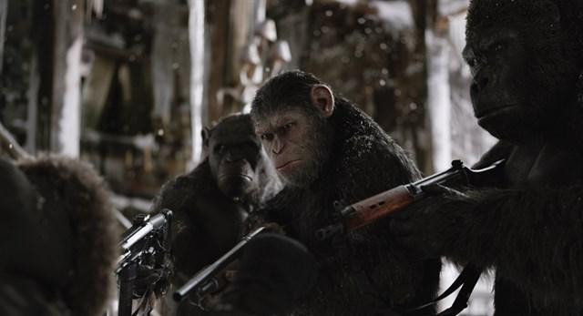 """Las primeras críticas de """"El Planeta de los Simios: La Guerra"""" la sitúan como la mejor de la saga"""