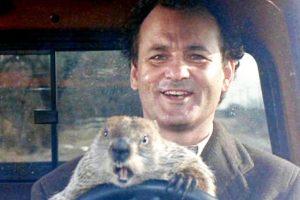 """""""El Día de la Marmota"""" daría el salto a a la pantalla chica en formato serie"""